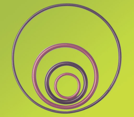 Ptfe O-Ring